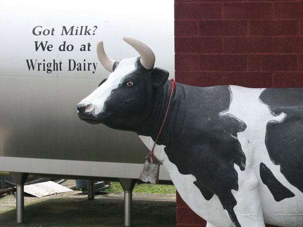 wright_dairy_alabama